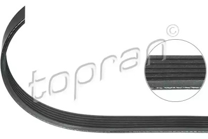 Поликлиновой ремень 116 928 TOPRAN